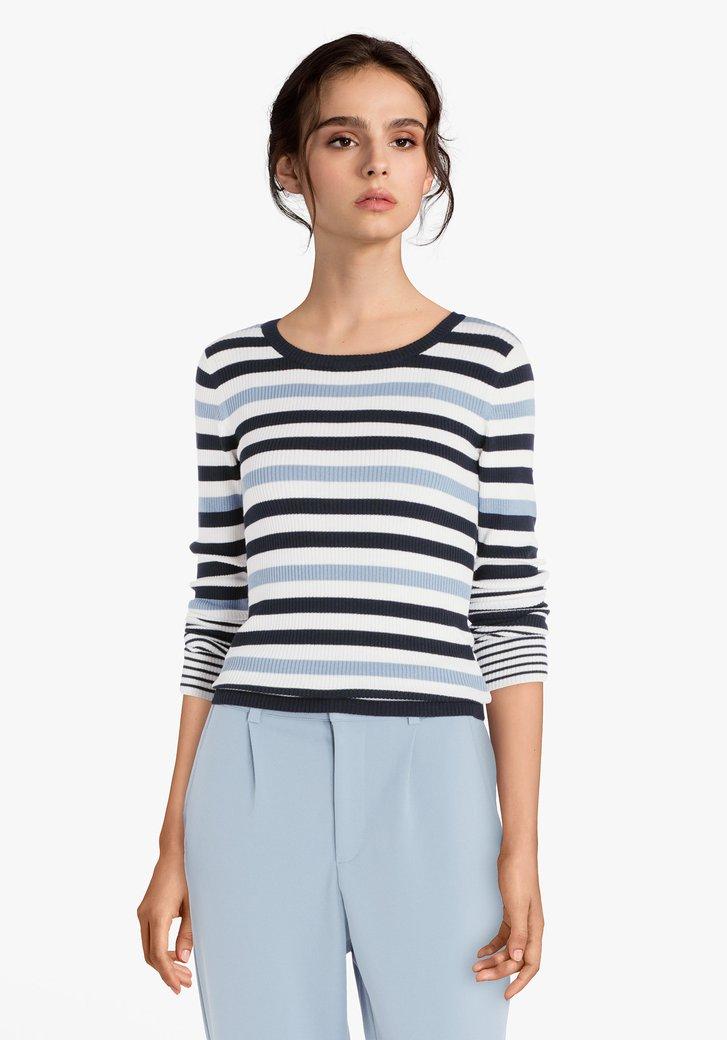 Blauw-wit gestreepte trui