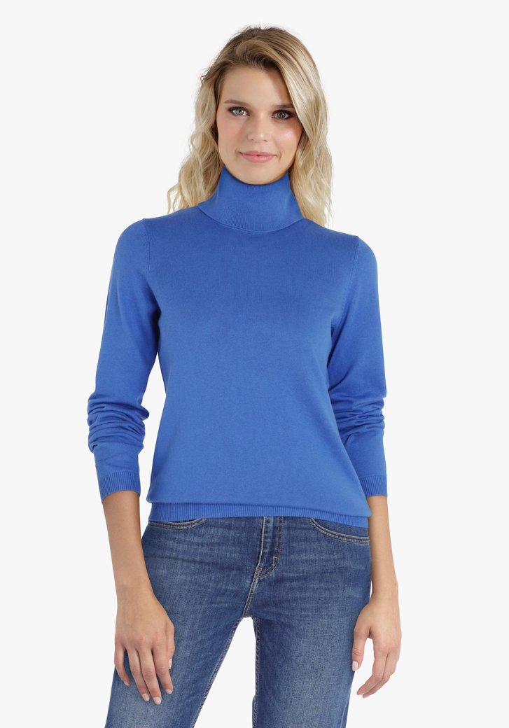 Blauwe trui met rolkraag