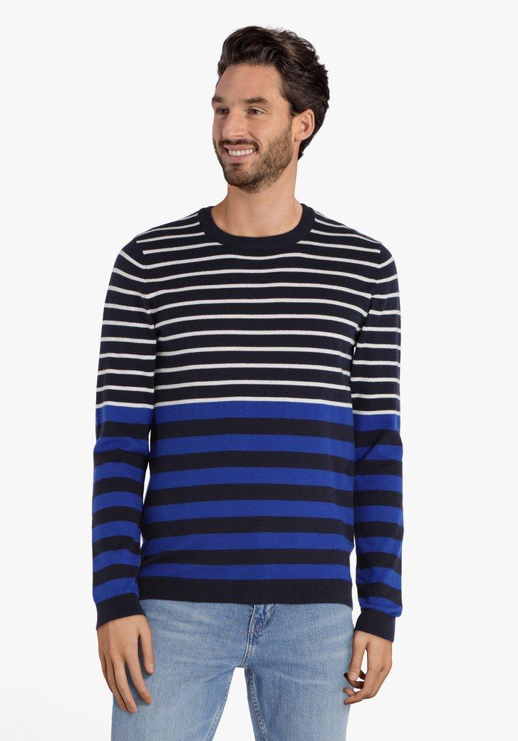 Donkerblauw gestreepte trui met ronde hals