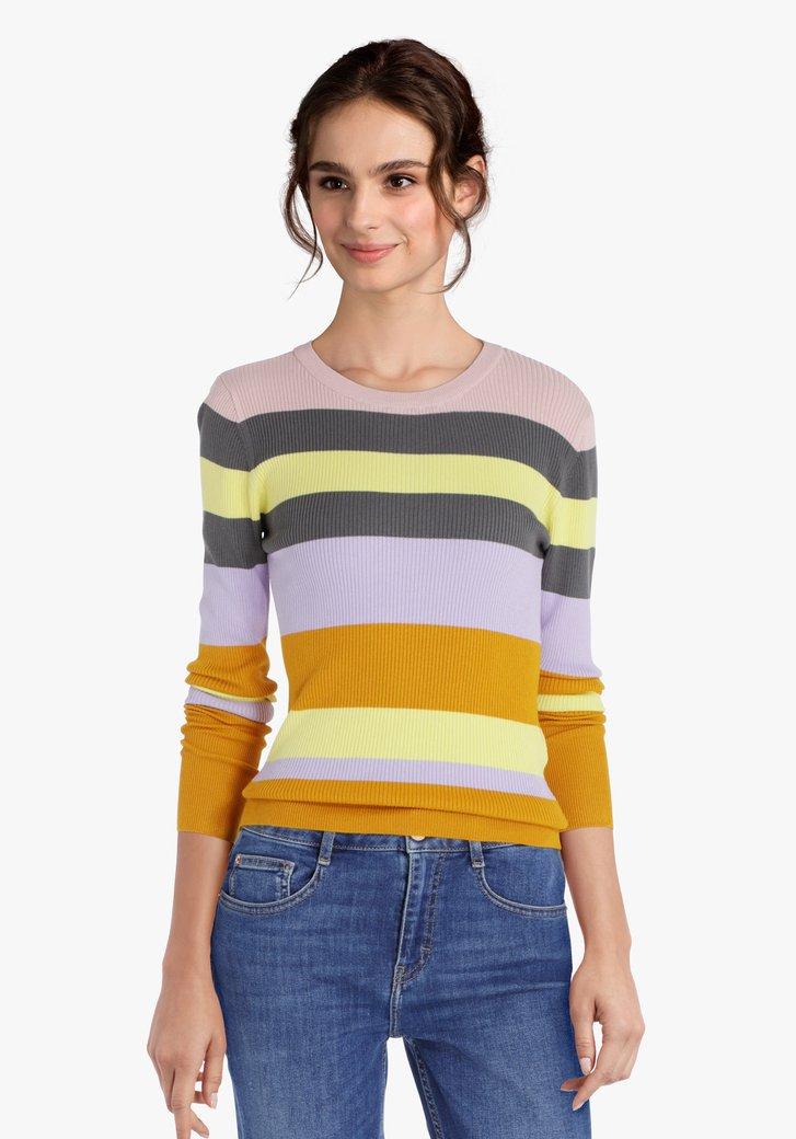 Gestreepte trui in verschillende kleuren