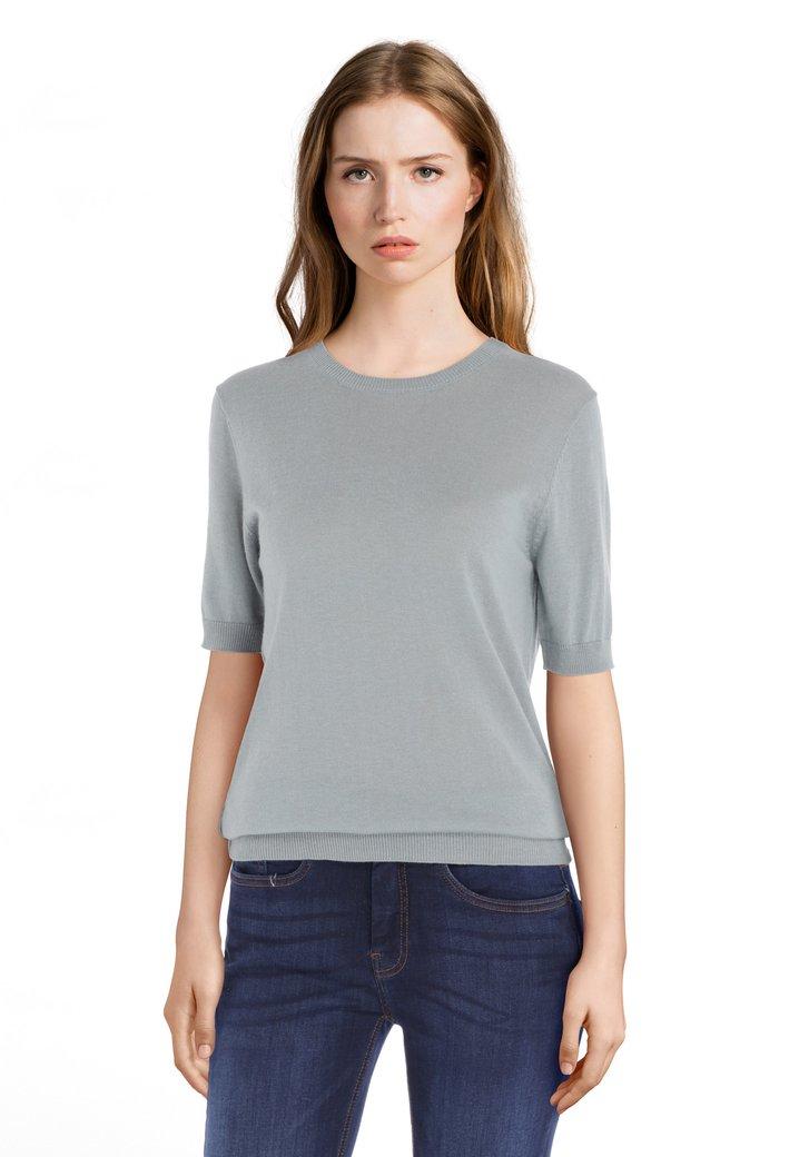 Grijsblauwe trui met korte mouwen