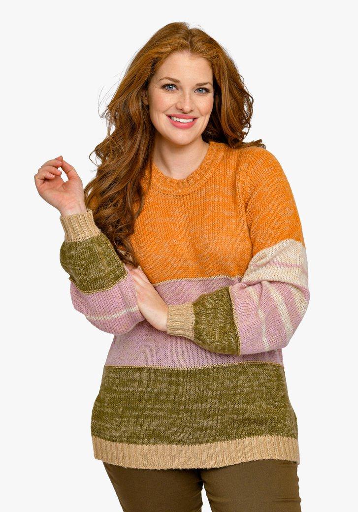 Kleurrijke gebreide trui